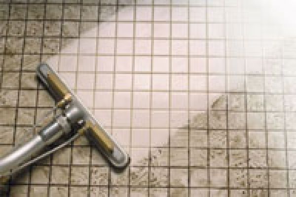 Clean And Tidy Carpet Cleaning